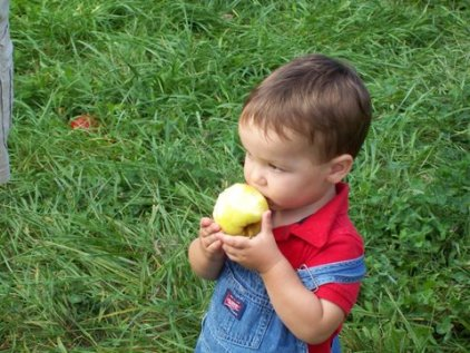 connor apple