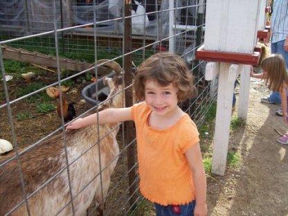 liz goat